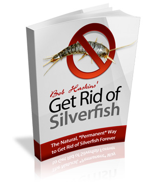 Silverfish Control: The Ultimate Guide to Get Rid of Silverfish
